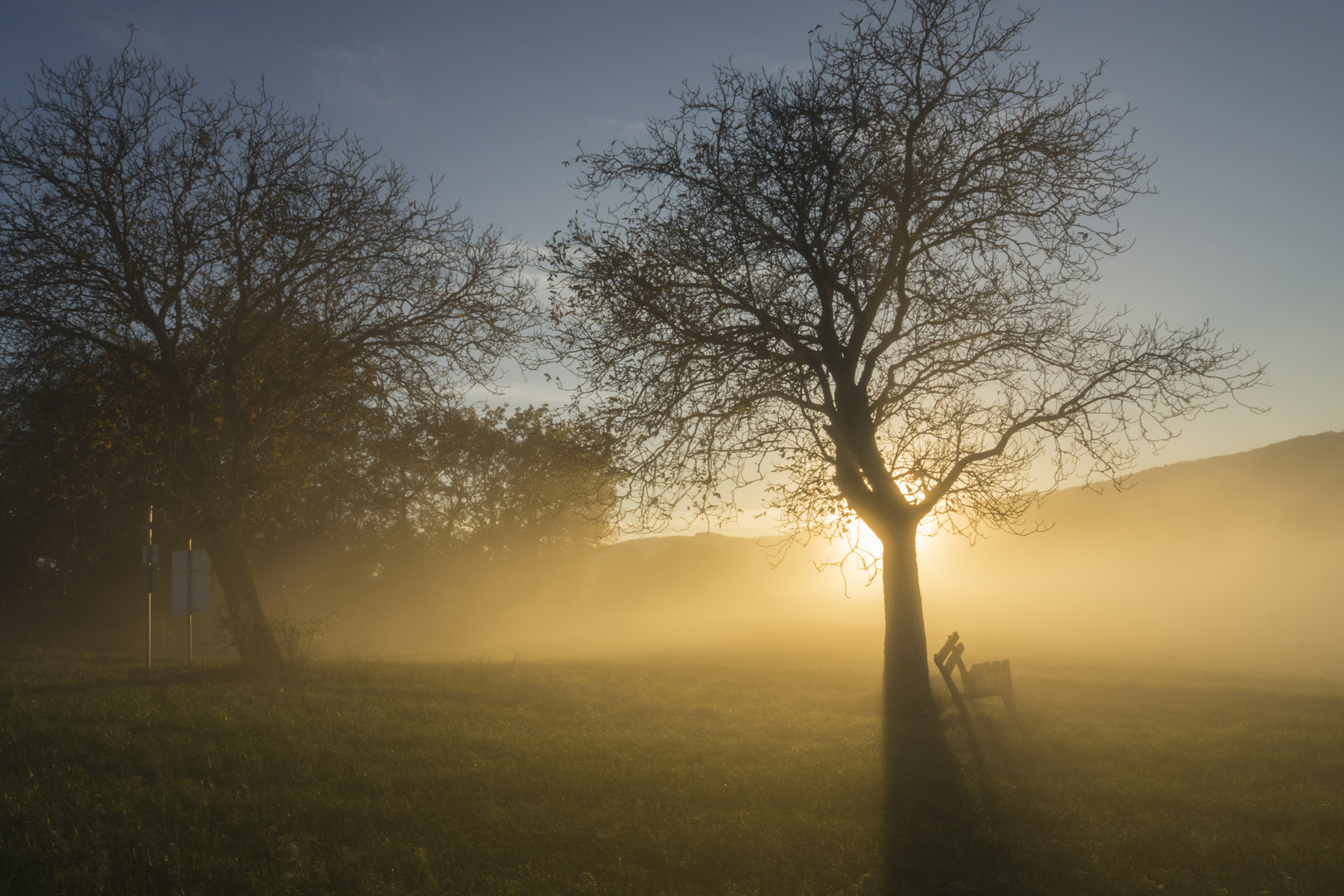Nebelschwaden beim Sonnenuntergang