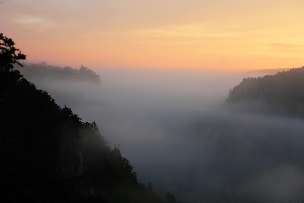 ....Nebelschwaden