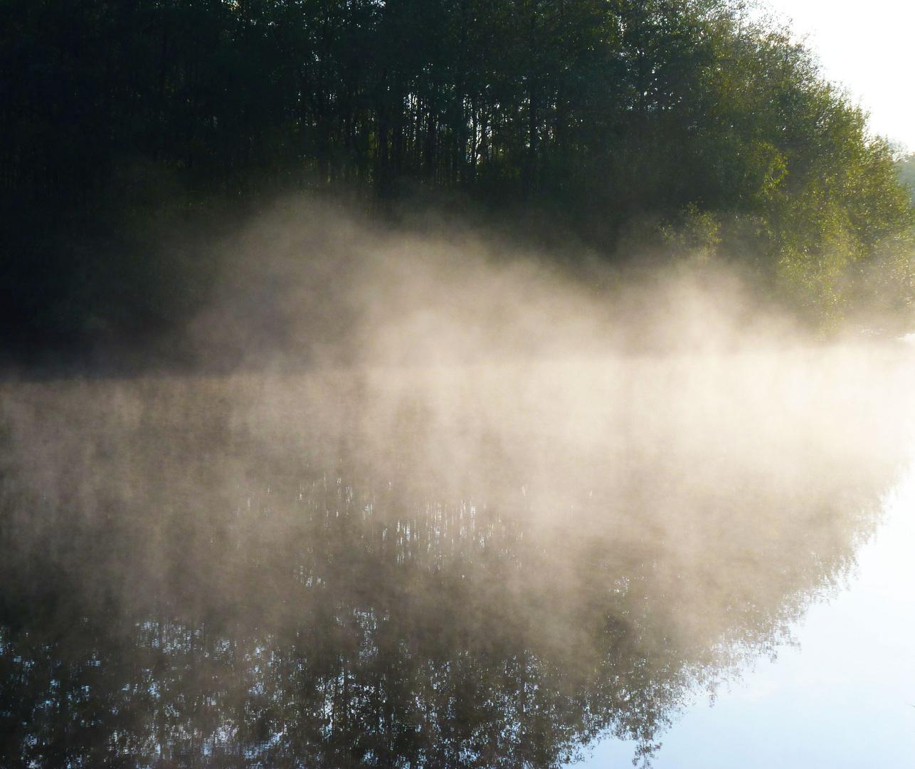 Nebelschwaden über'n Blutwiesensee