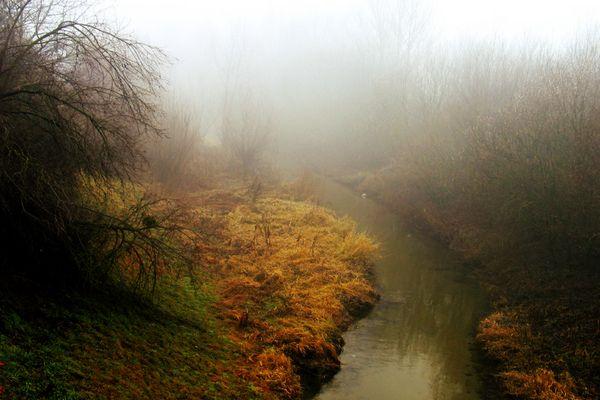 Nebelschwadenbilder II