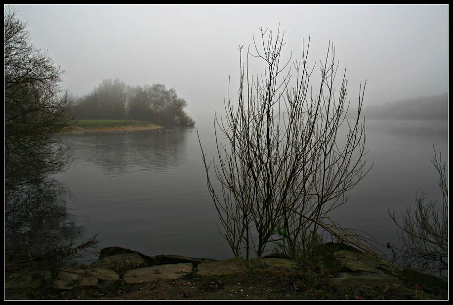 Nebelstimmung am Baggersee