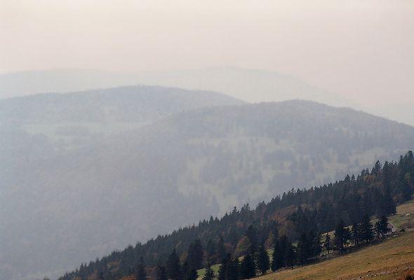 Nebelstimmung im Jura