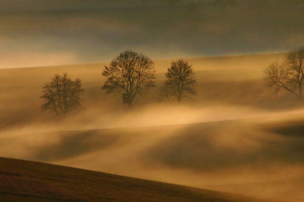 Nebelstimmung in den Mühlviertler Bergen