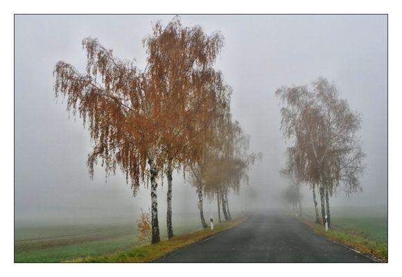 NebelTag