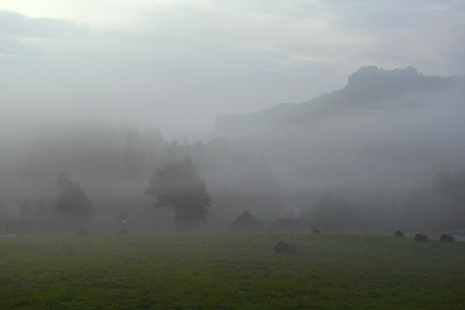 Nebelverhangen