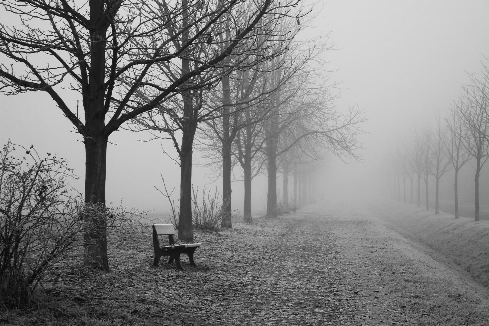 Nebelwanderung II
