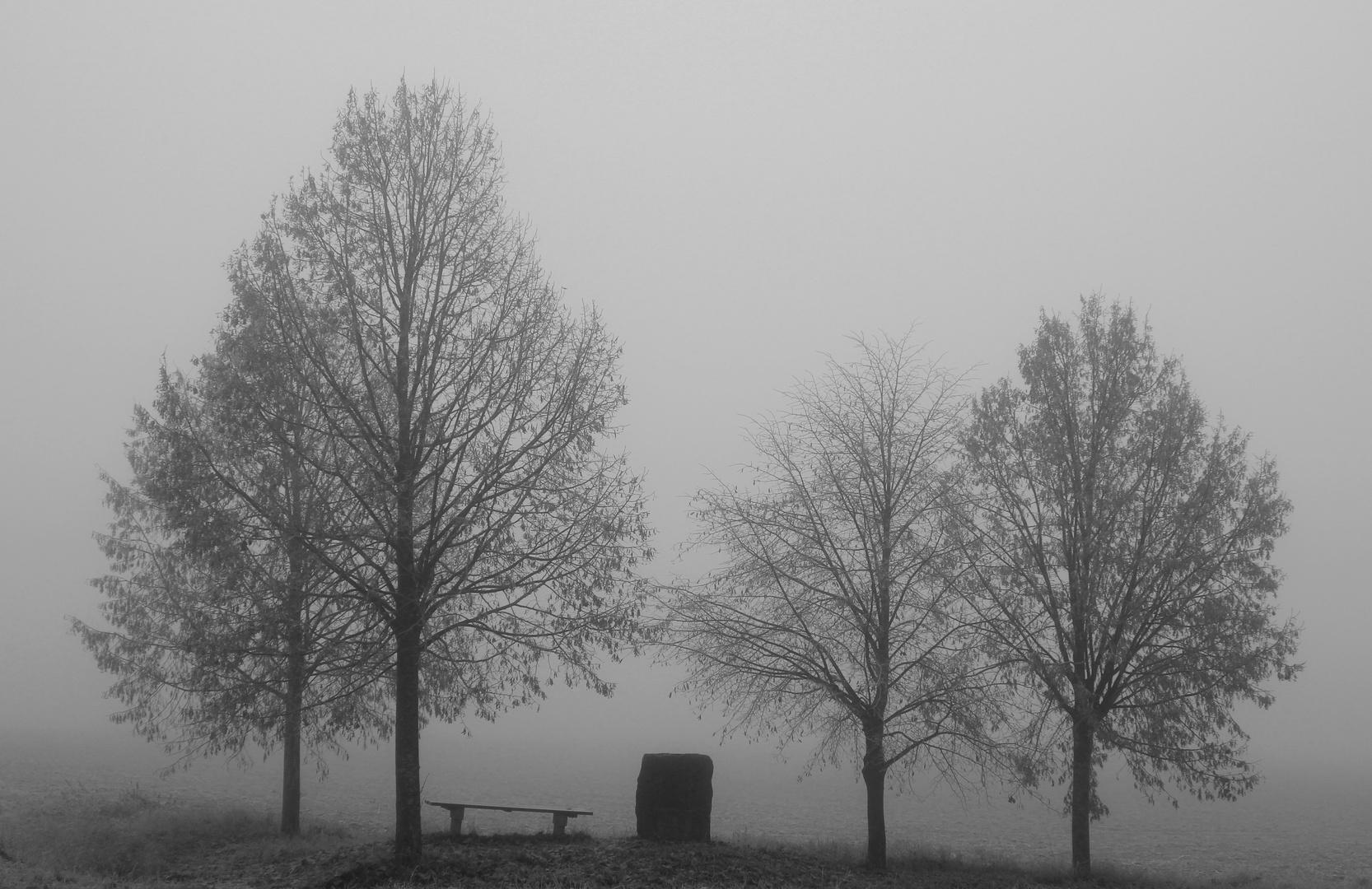 Nebelwanderung III