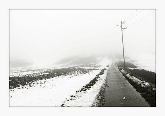 Nebelweg - Spaziergang mit Hund IV