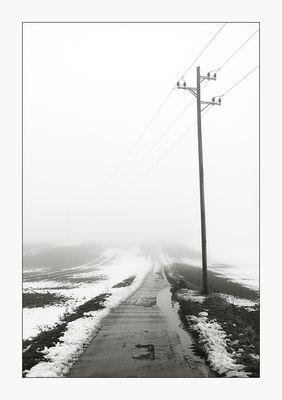 Nebelweg - Spaziergang mit Hund V