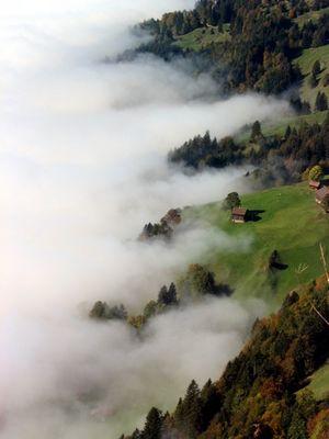 Nebelwellen