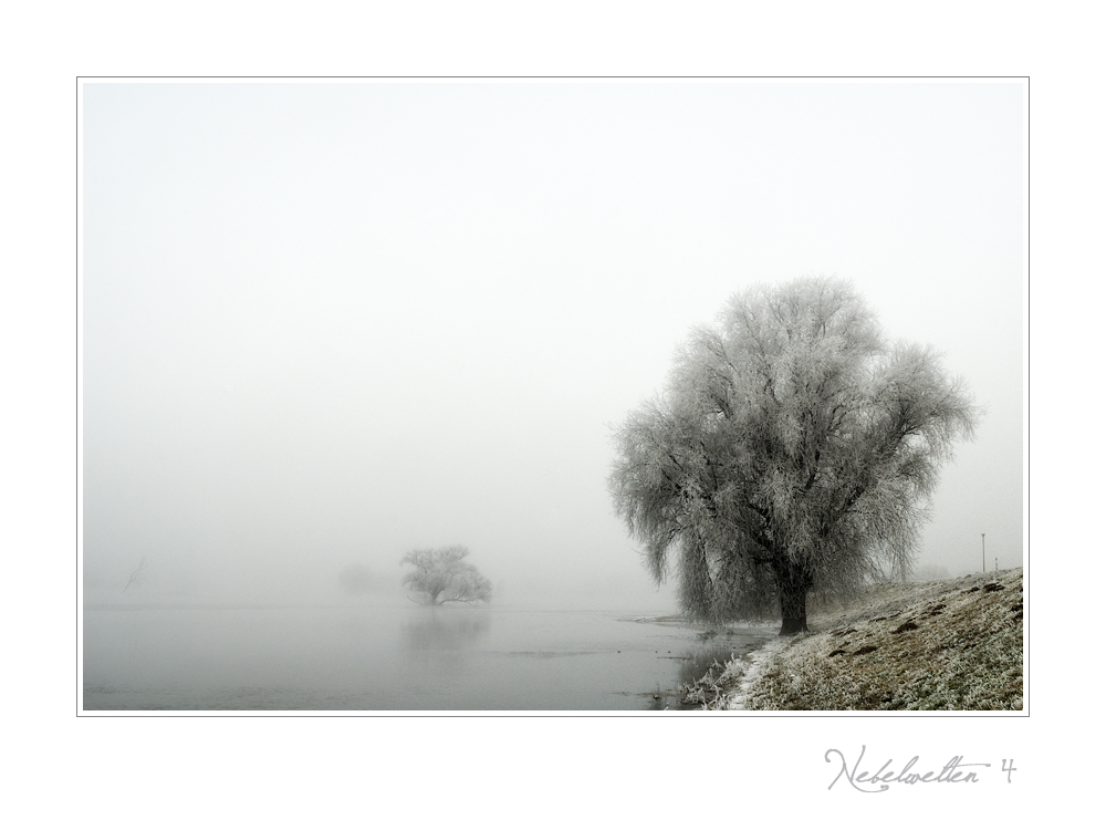 Nebelwelten....