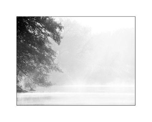 *Nebelwelten*
