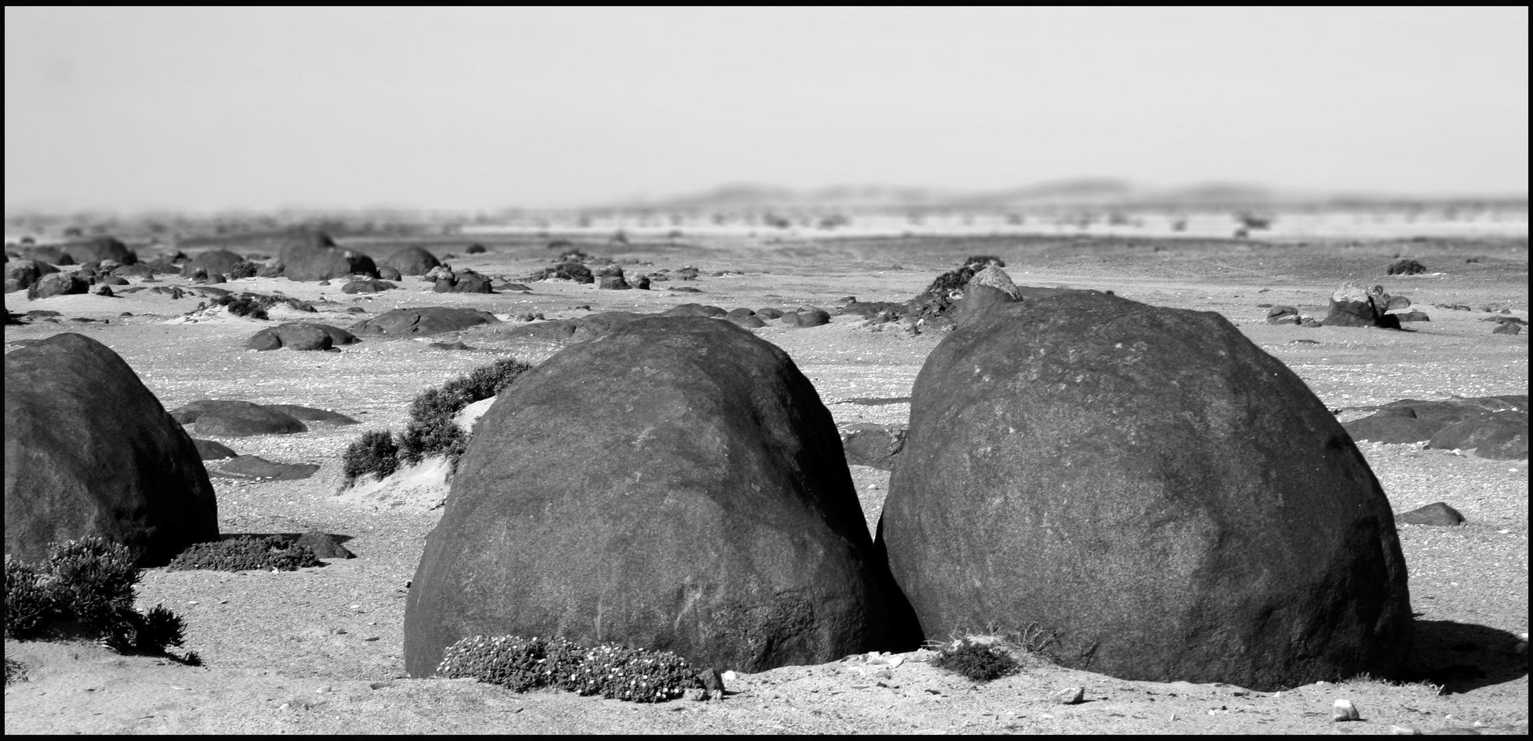 Neben der Pad, bei Wlotzkasbaken- Namibia