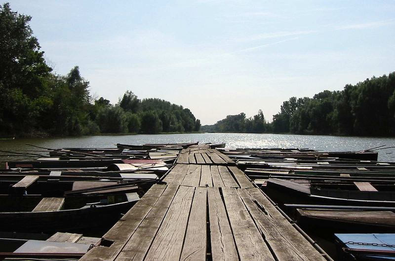 Nebenarm der Donau