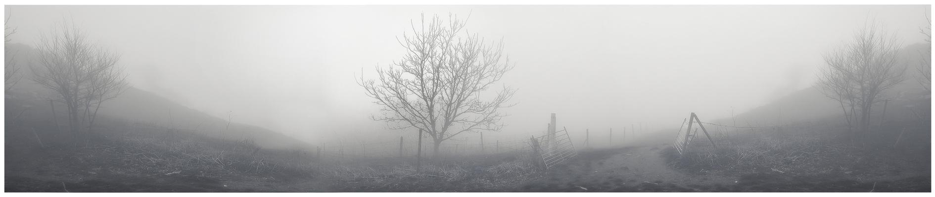 """"""" Neblina panorámica"""" ll"""