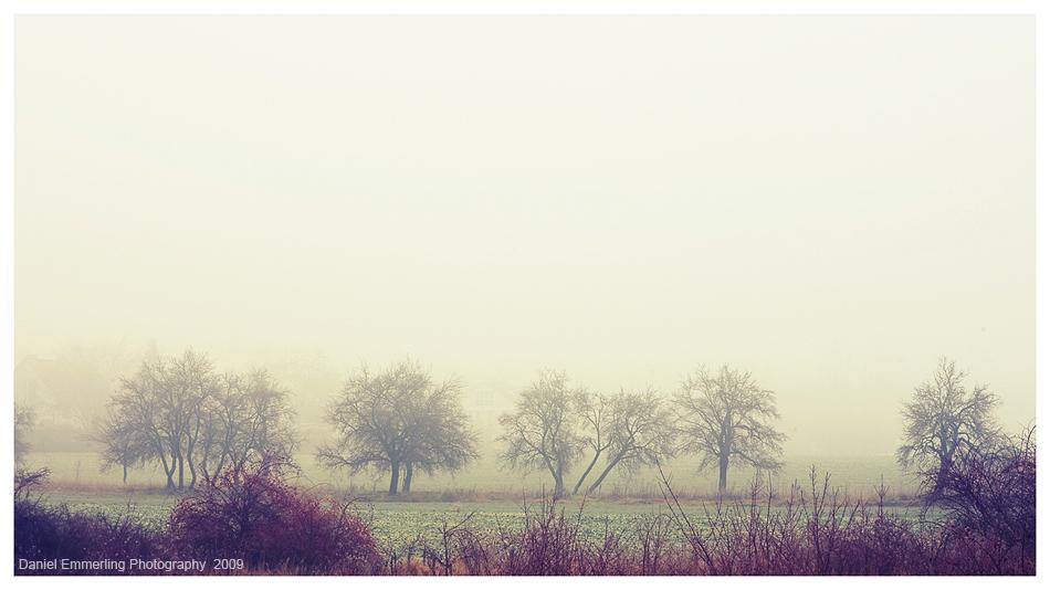 Nebula Trees