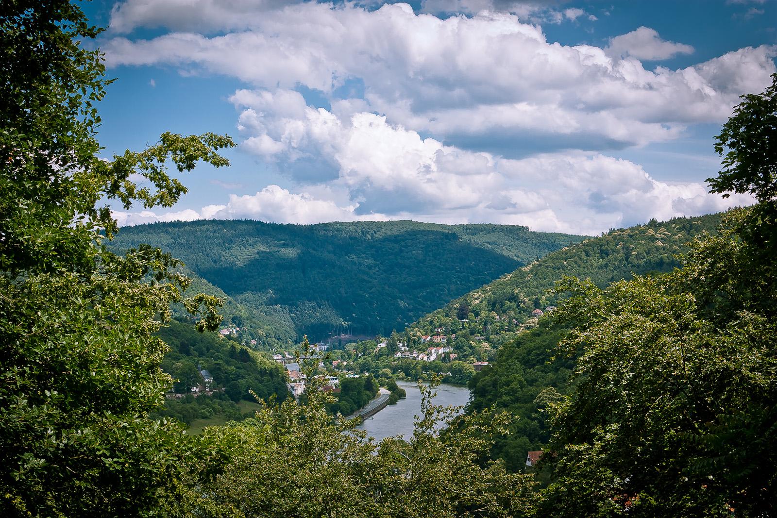 Neckar bei Heidelberg 1