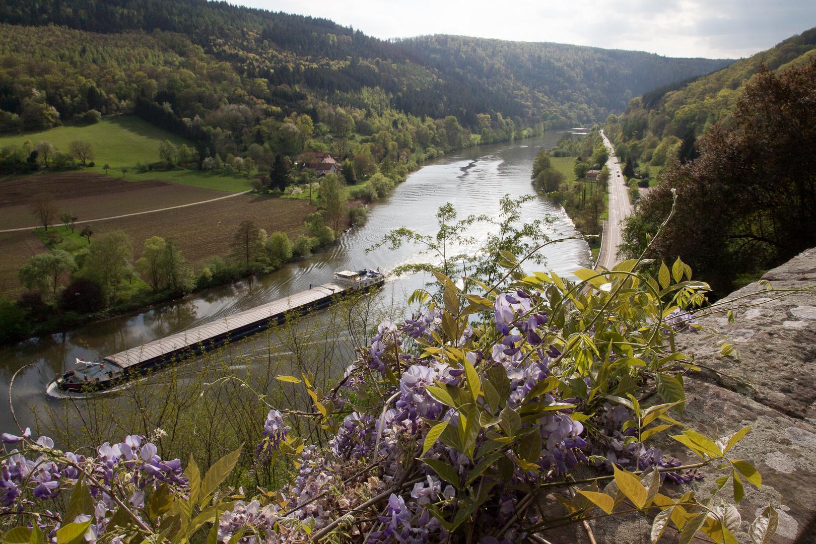 Neckar bei Zwingenberg