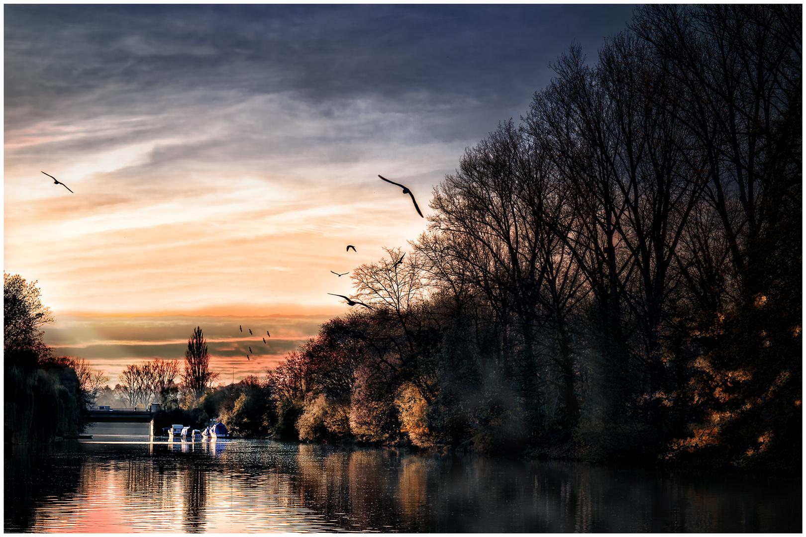 Neckar Idylle
