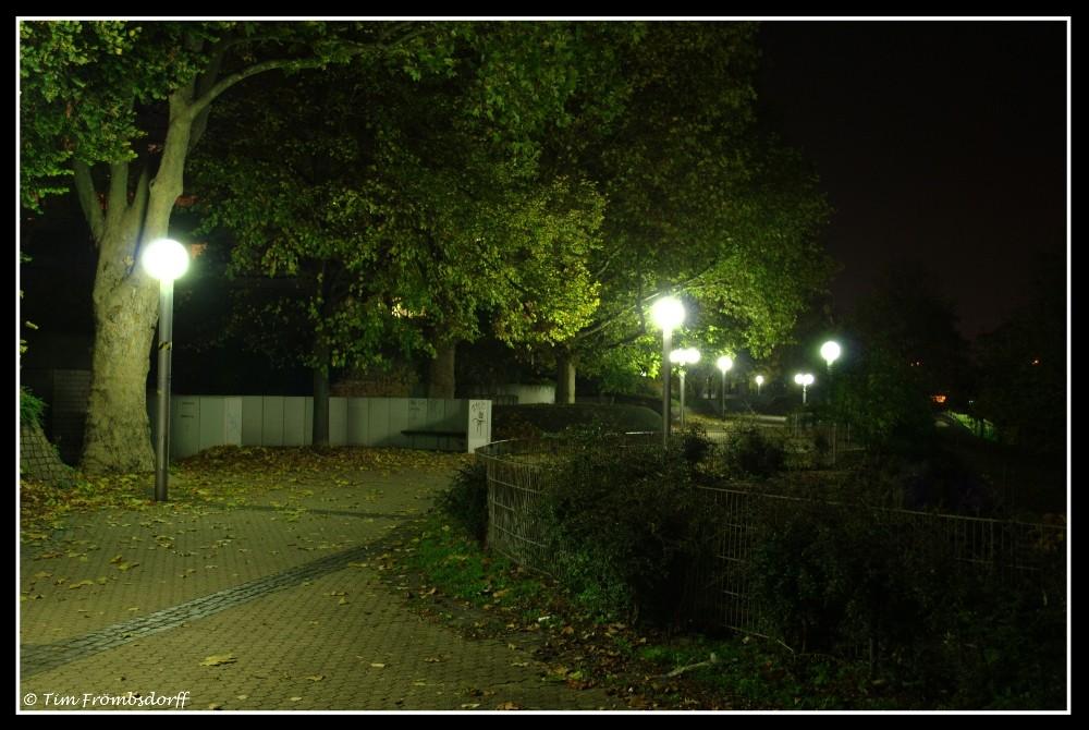 Neckarpromenade am Abend