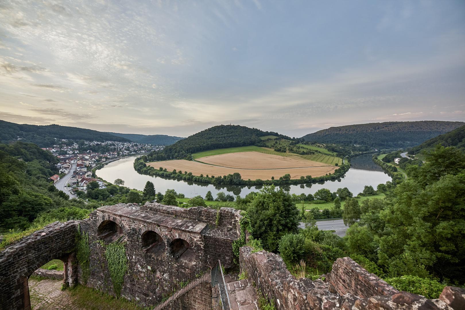 Neckarschleife Neckarsteinach