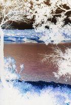 negative landscape