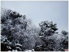 Neige à Nice