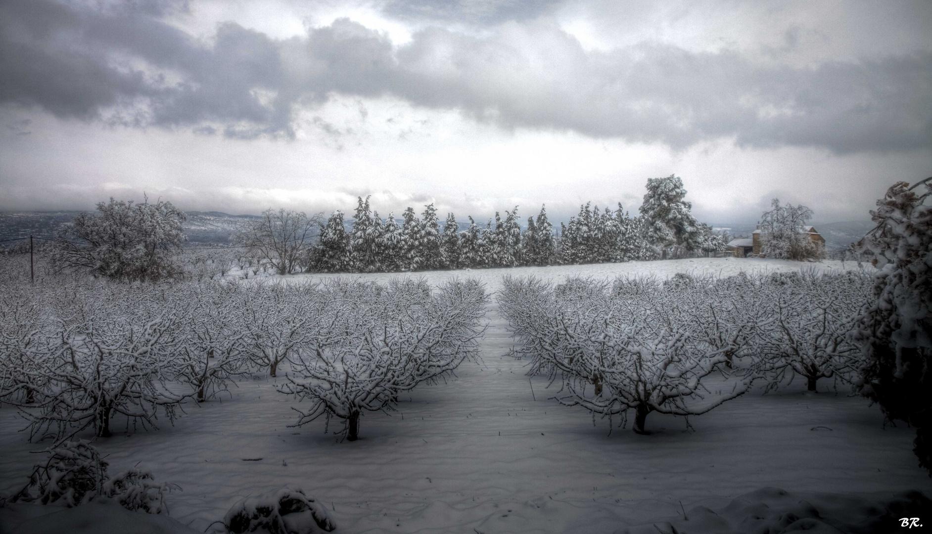 neige en Provence (2)