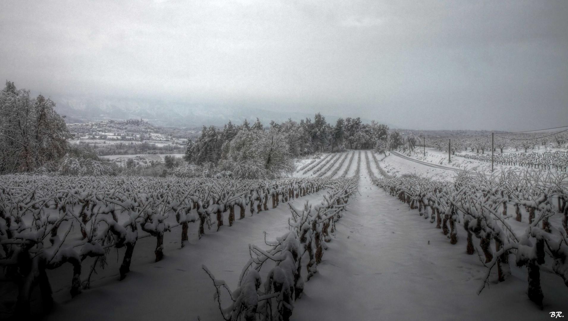 neige en Provence (3)