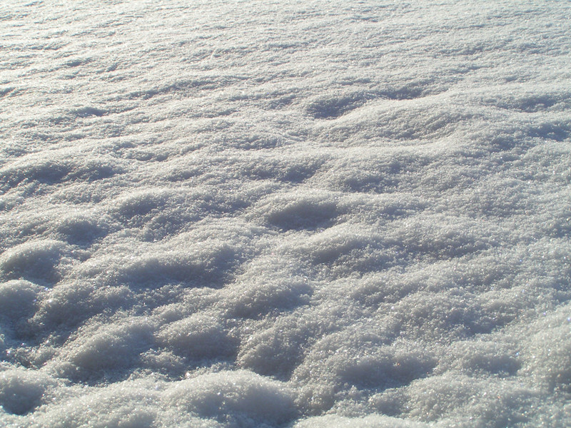 Neige ensoleillée