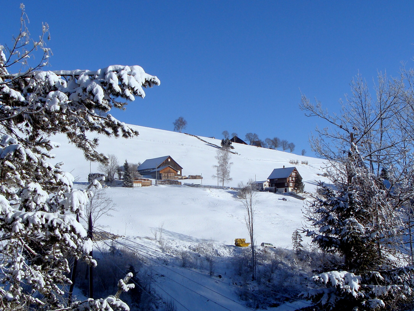 Neige et ciel bleu.001