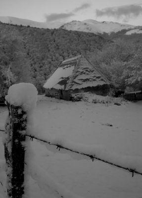 neige fraiche