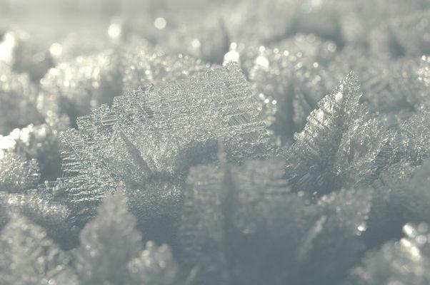 neige glacée