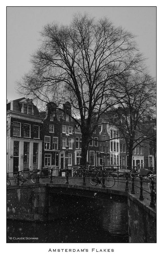 Neige sur Amsterdam