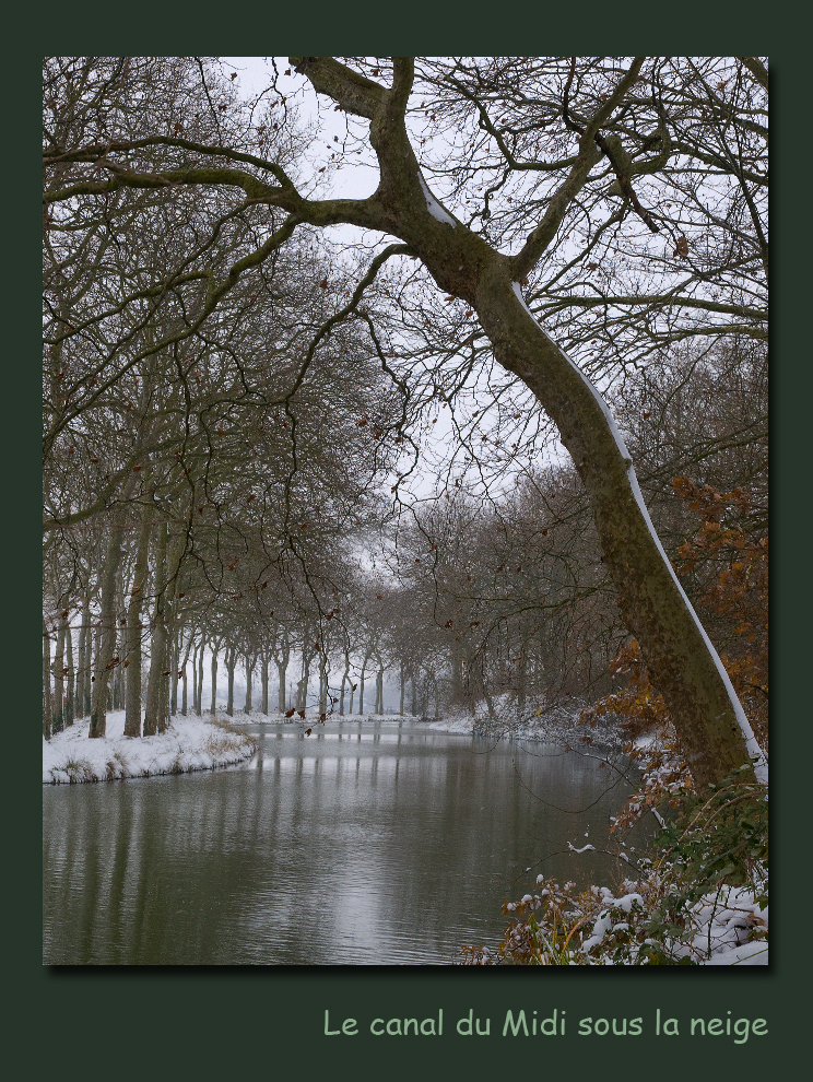 Neige sur le canal du midi