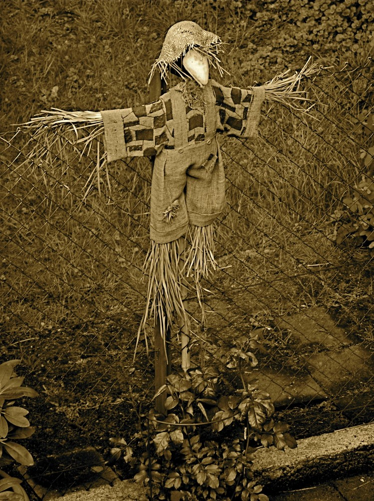 Neighbors Scarecrow