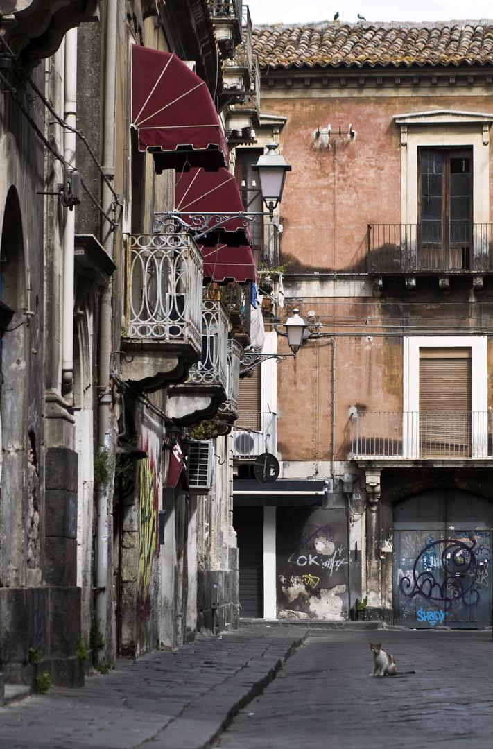 NEL RITMO SICILIANO 6 - CATANIA - Sicilia Bedda