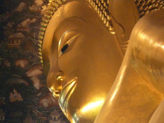 Nella mente ha origine la sofferenza; nella mente ha origine la cessazione della sofferenza.