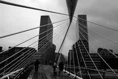 Nella ragnatela di Calatrava