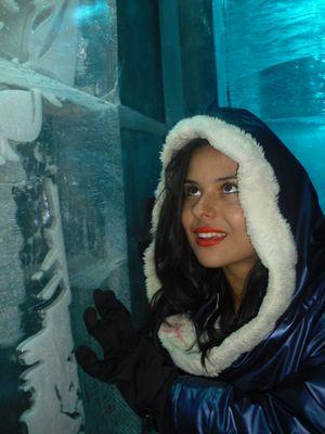 Nell'icebar a Stockholma