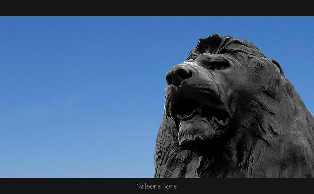 Nelsons Lions