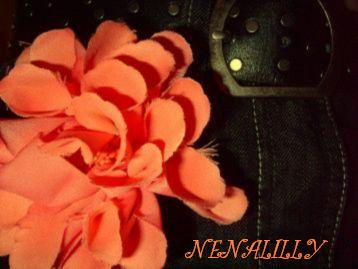 Nenalilly Debüt