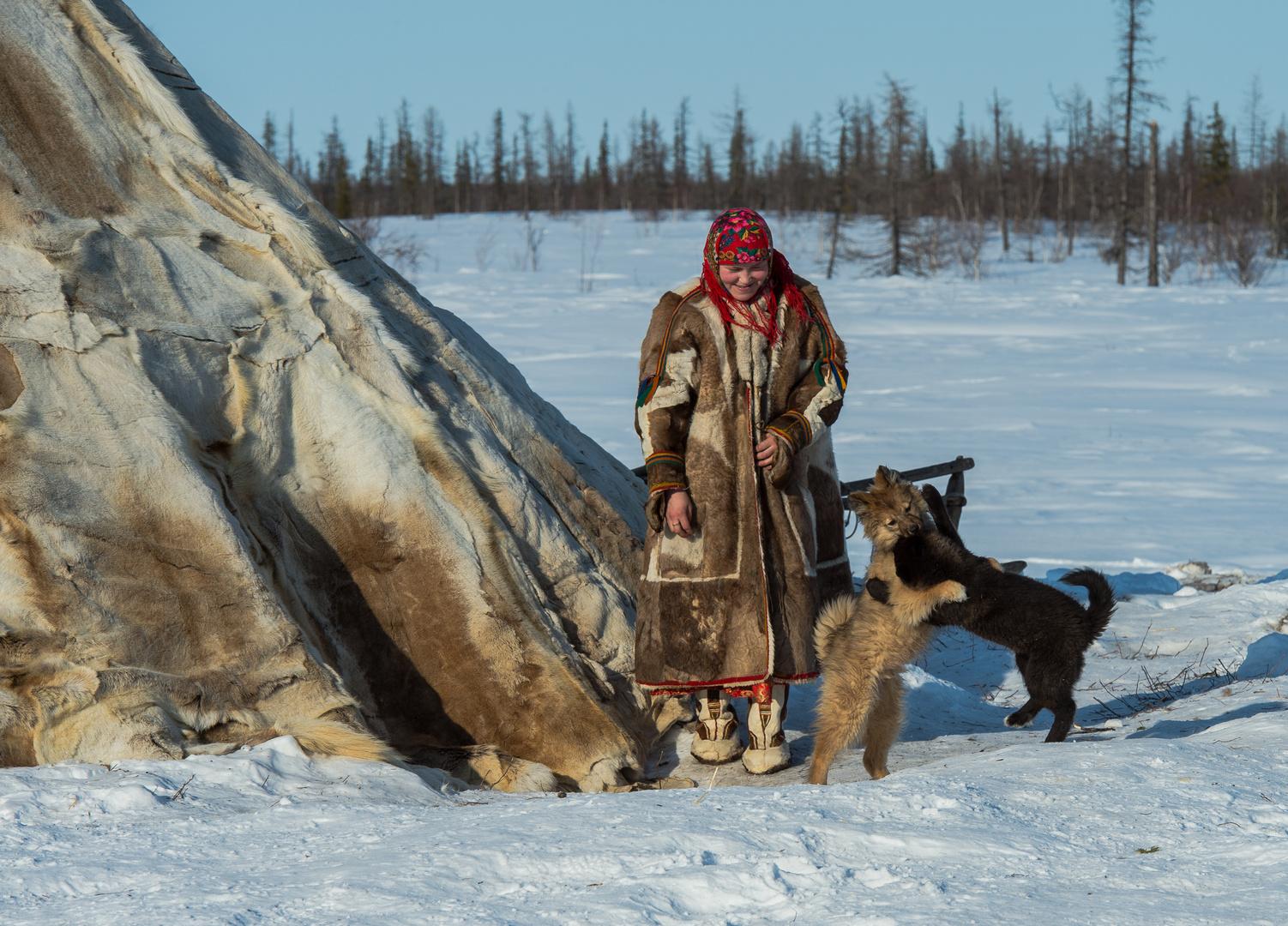 Nenets in Sibirien