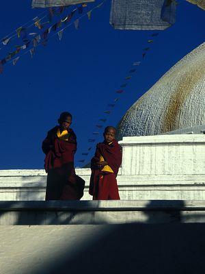 Nepal 24: Freunde