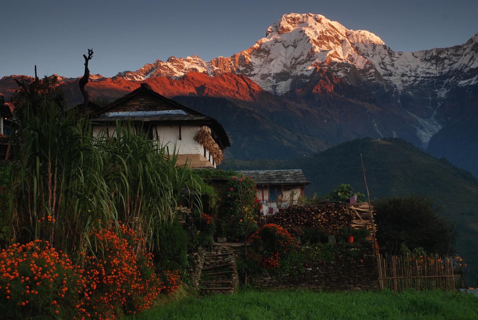 Nepalreise 2009 Erlebnistour