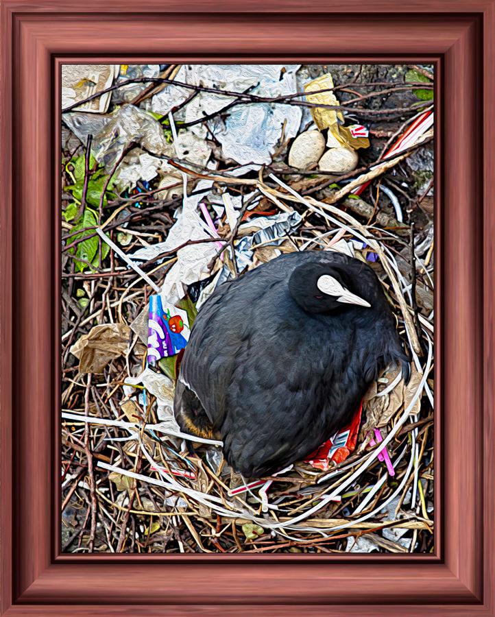 Nestbau am Rande der Gesellschaft