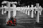 Netherlands American Cemetery and Memorial .........