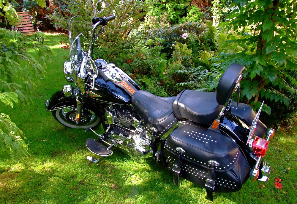 Netter Besuch im Garten - Ob ich den Schaukelstuhl gegen die Harley tausche?
