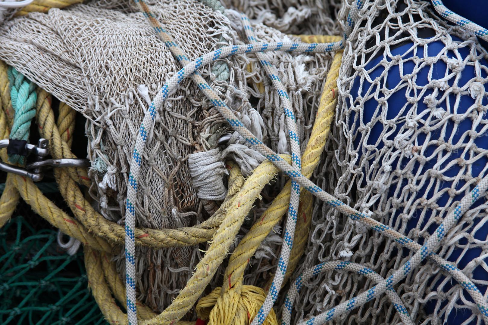 Netze