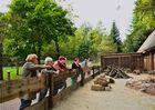 Netzwerk Ausflug in den Vogelpark Steinen 2.10.13